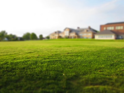 lawn-768316_1920